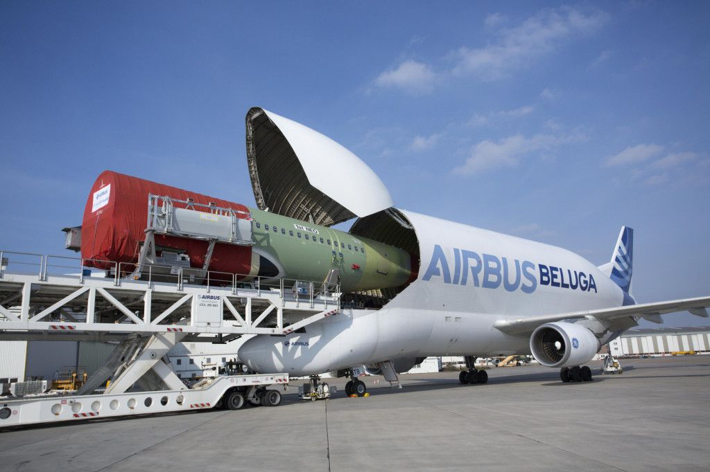 A New Pod Of White Whales Due In 2019 With Images Airbus