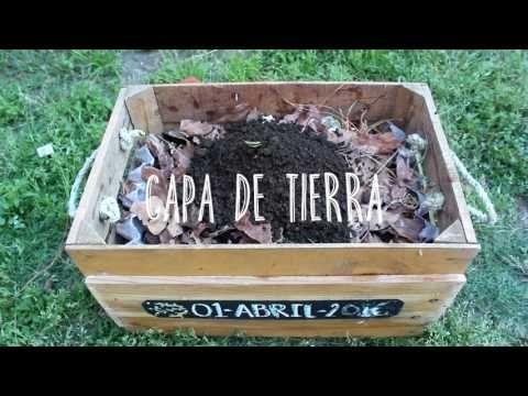 Cómo Hacer Composta Casera Click Youtube Small Space Gardening Compost Garden Compost