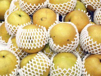 Multiple varieties of pear grafting asian