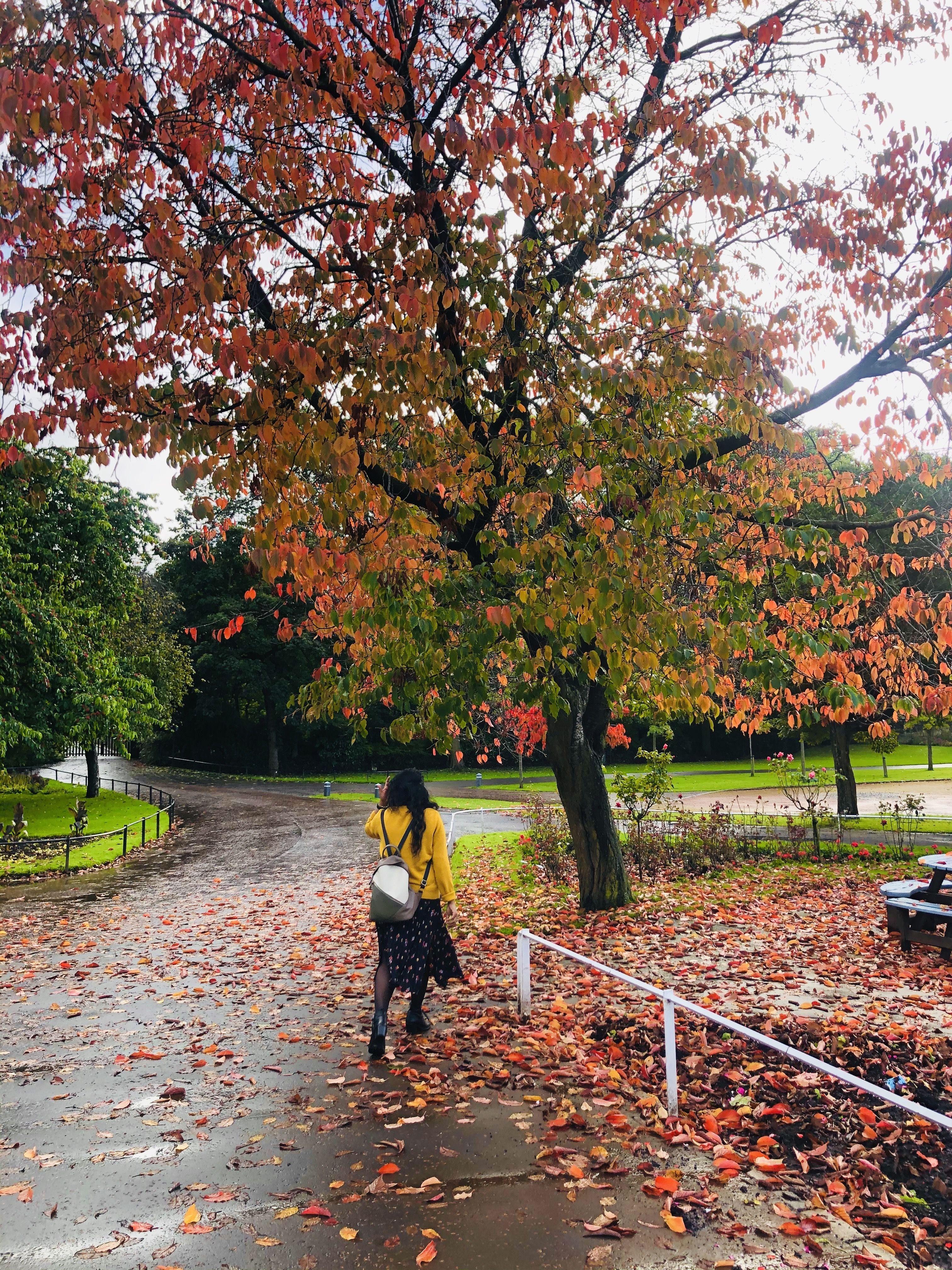 Chasing Autumn tones 🍂✨🍁 #Shewhowanders #Shotoniphone #onlyinwhistler #travelphotography #edinphoto #StreetStyle #ForeverEdinburgh #ThisisEdinburgh #pictureoftheday #Manali #thewanderingtourists #triptocommunity #mypixeldairy #desiinfluencer #autumnquotes #Femmetravel #staycation #autumnleaves #photooftheday #autumnoutfit #beautifuldestinations