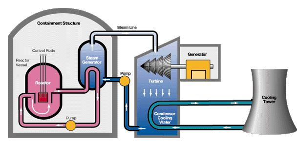 Diagram Of What Happens Inside A Nuclear Power Plant Written For You To Understand Read More Nuclear Energy Nuclear Power Nuclear Power Plant