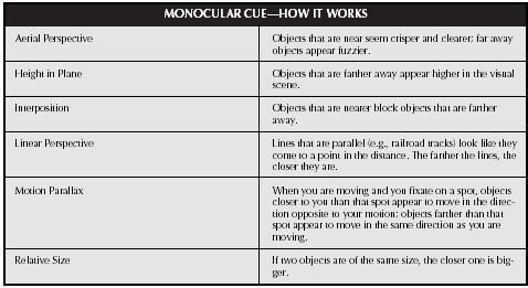 Monocular cues AP psychology | School | Ap psychology, Psychology