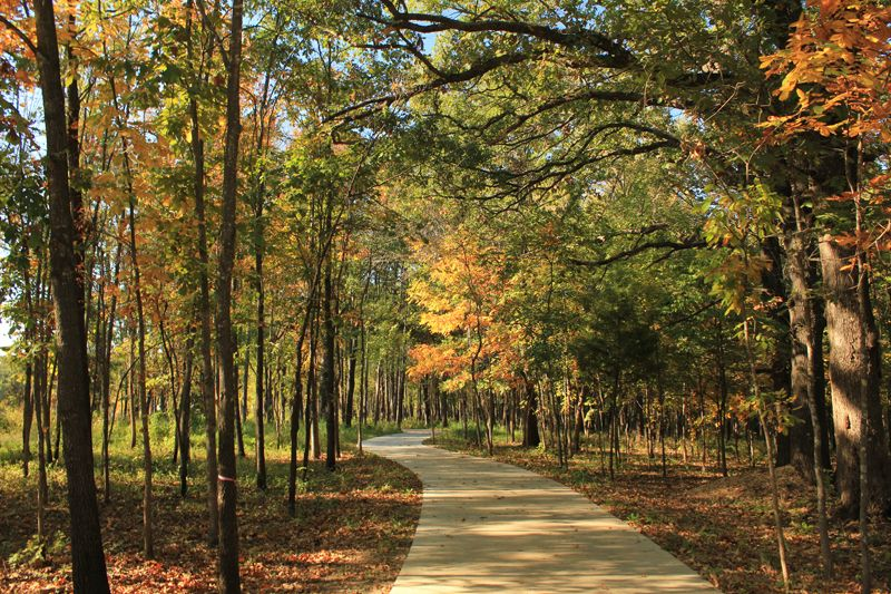 Autumn Leaves Orchard Trail Crystalbridges Org Nature