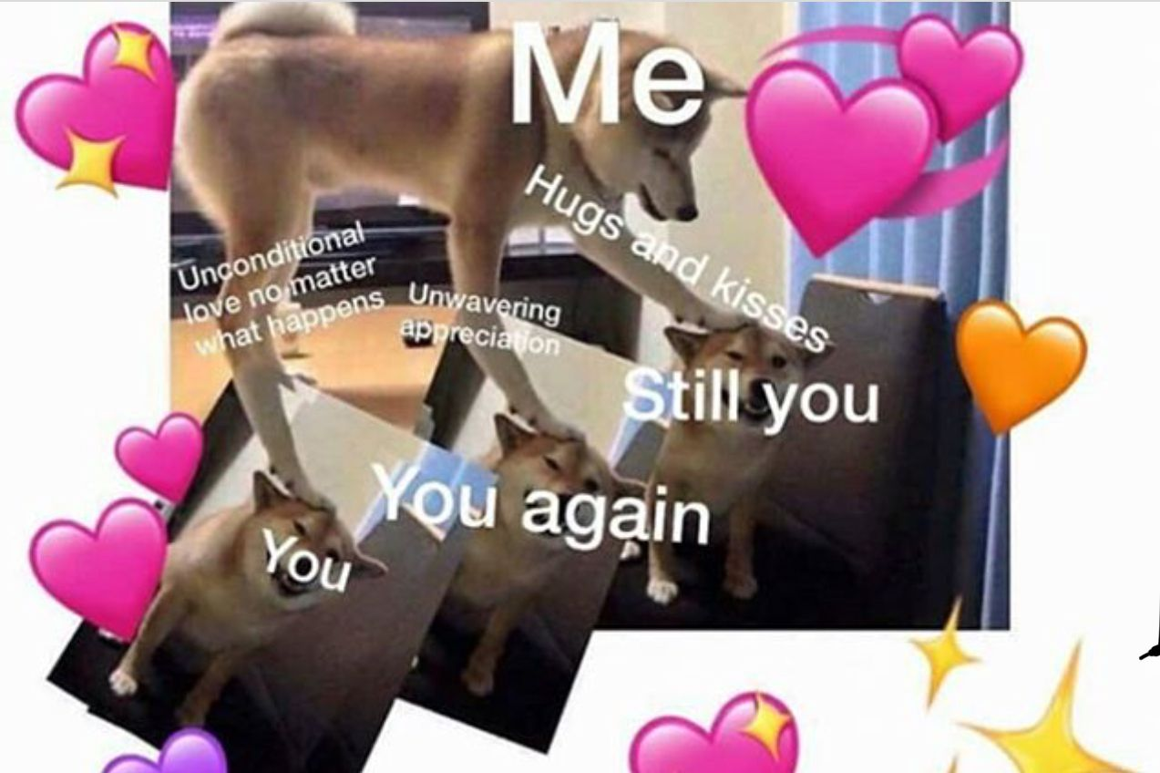 Pin By Asiamoanae On Wholesome Memes Love You Meme Love Memes Wholesome Memes