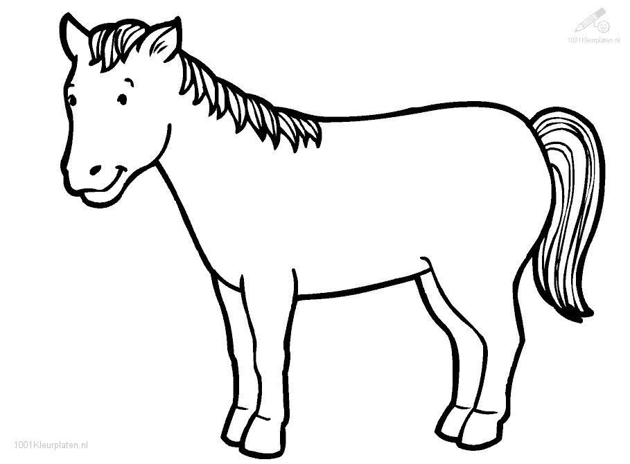 horse coloring pages 1001 coloringpages animals horses horse coloring page - Horse Coloring Pages For Kids