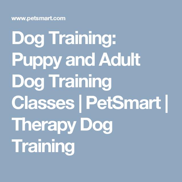 Dog Training: Puppy and Adult Dog Training Classes | PetSmart | Therapy Dog Training