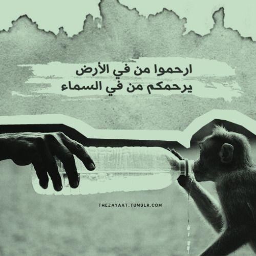 صور حكم اسلاميه صور مواعظ اسلاميه صور امثال اسلاميه Movie Posters Dream Images Poster
