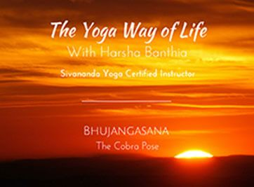 cobra pose benefits  how to do bhujangasana steps and