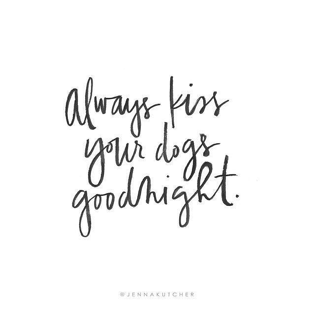 We hope you all had a wonderful week and thank dog