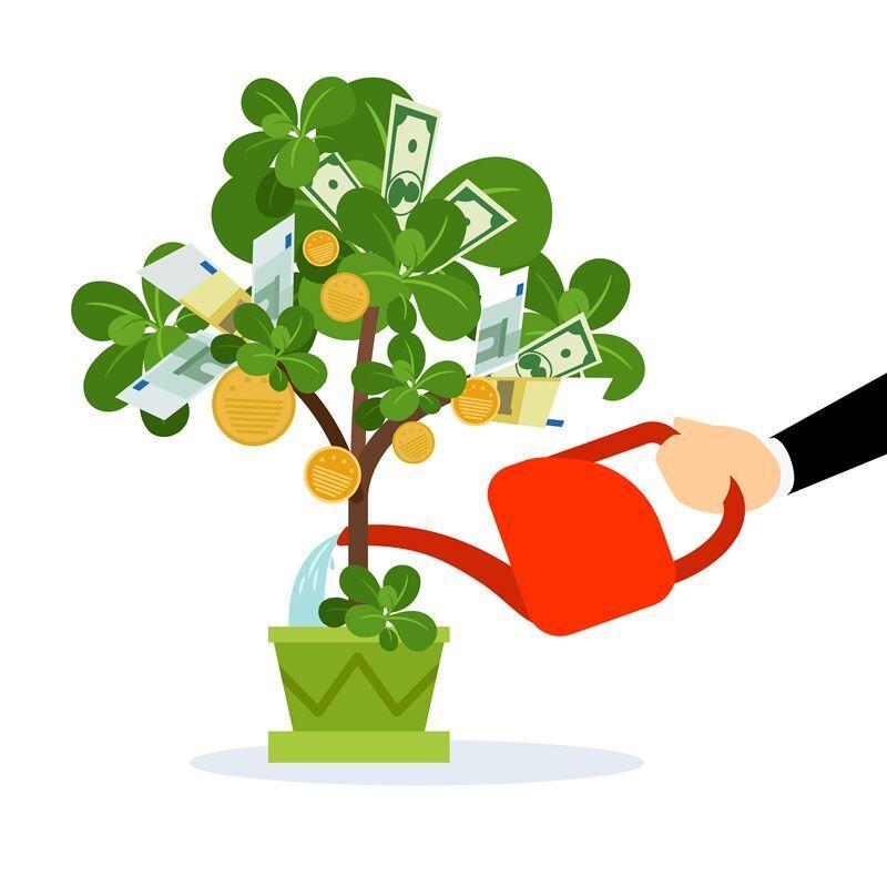 Money tree care illustration by smartstartstocker