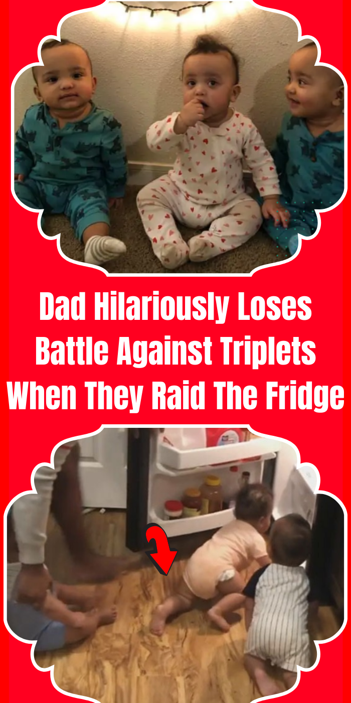 Dad Hilariously Loses Battle Against Triplets When They Raid The Fridge