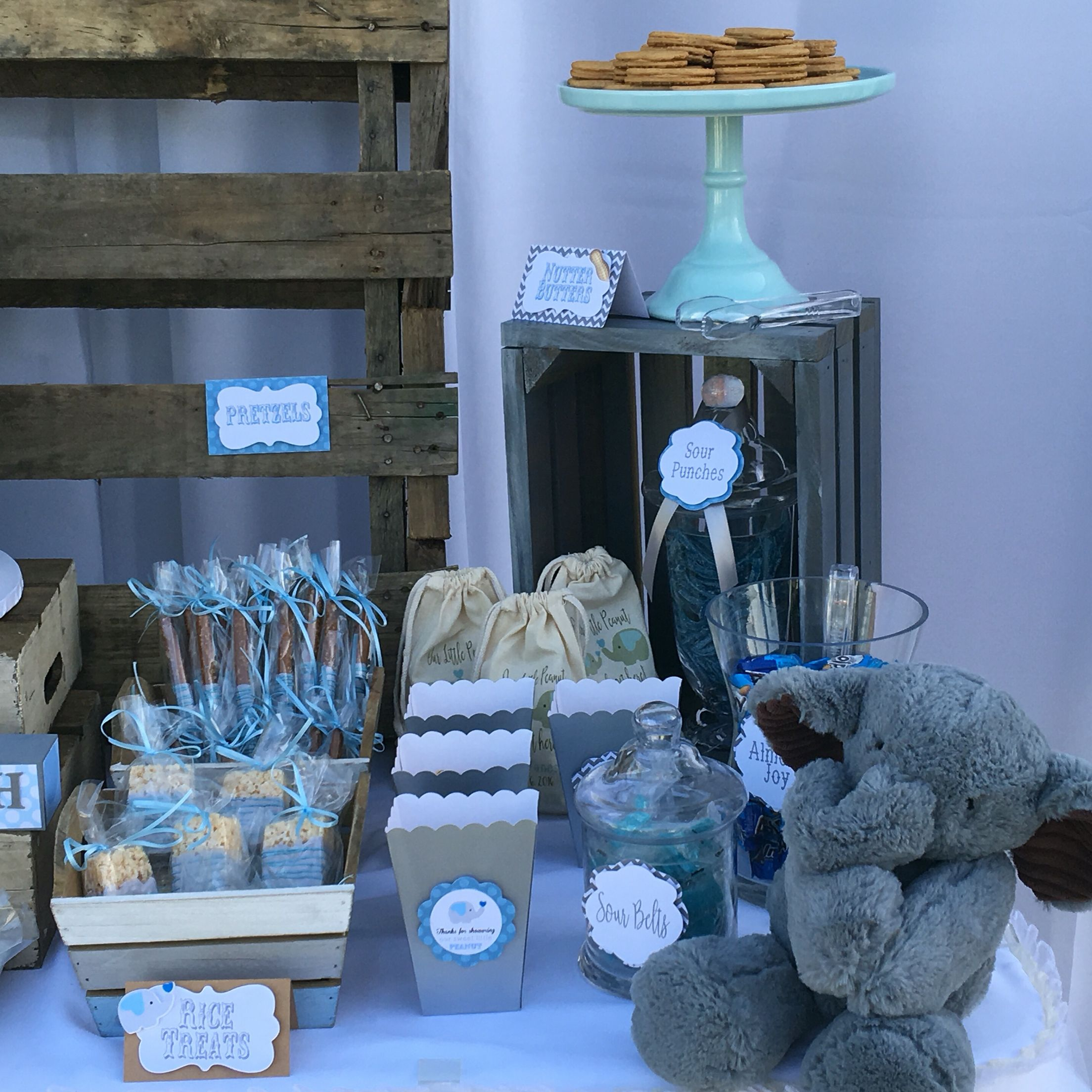 Elephant Themed Baby Shower: Rustic Blue And Gray Elephant Baby Shower Theme