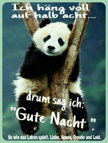 Wünsche all meinen FB Freunden auch eine Gute Nacht und ...