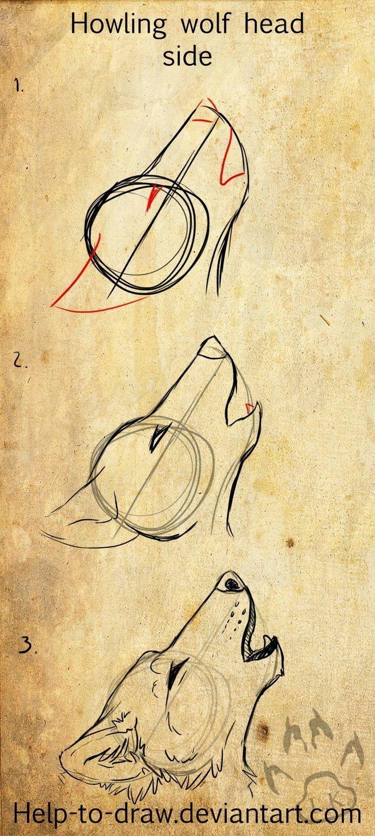 Schritt für Schritt Zeichnung des Wolfkopfes. #sketchart