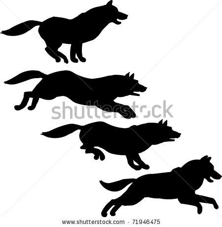 Husky Silhouettes Free Running Dog Shutterstock Eps Vector Running Dog Id 71946475 Dog Drawing Running Illustration Husky Drawing