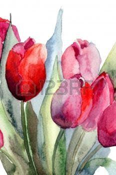 Fleur Peinture Tulipes Fleurs Peinture Aquarelle Peinture