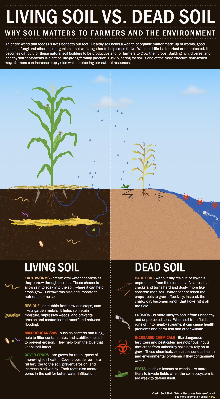 Building a drought proof farm op ed management for Soil management