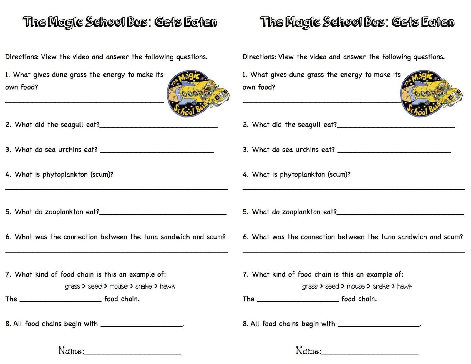 Free Worksheet Magic School Bus Worksheets magic school bus gets eaten worksheet laveyla com 17 best images about food webs on pinterest cause and effect