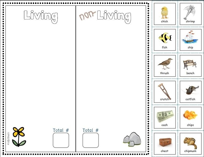 Living NonLiving Cut Paste Phonics Focus – Living and Nonliving Things Worksheets for Kindergarten