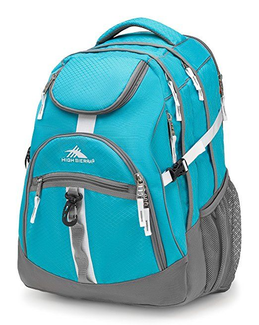 bc9f481c075 High Sierra Access Backpack | College Backpacks in 2019 | High ...