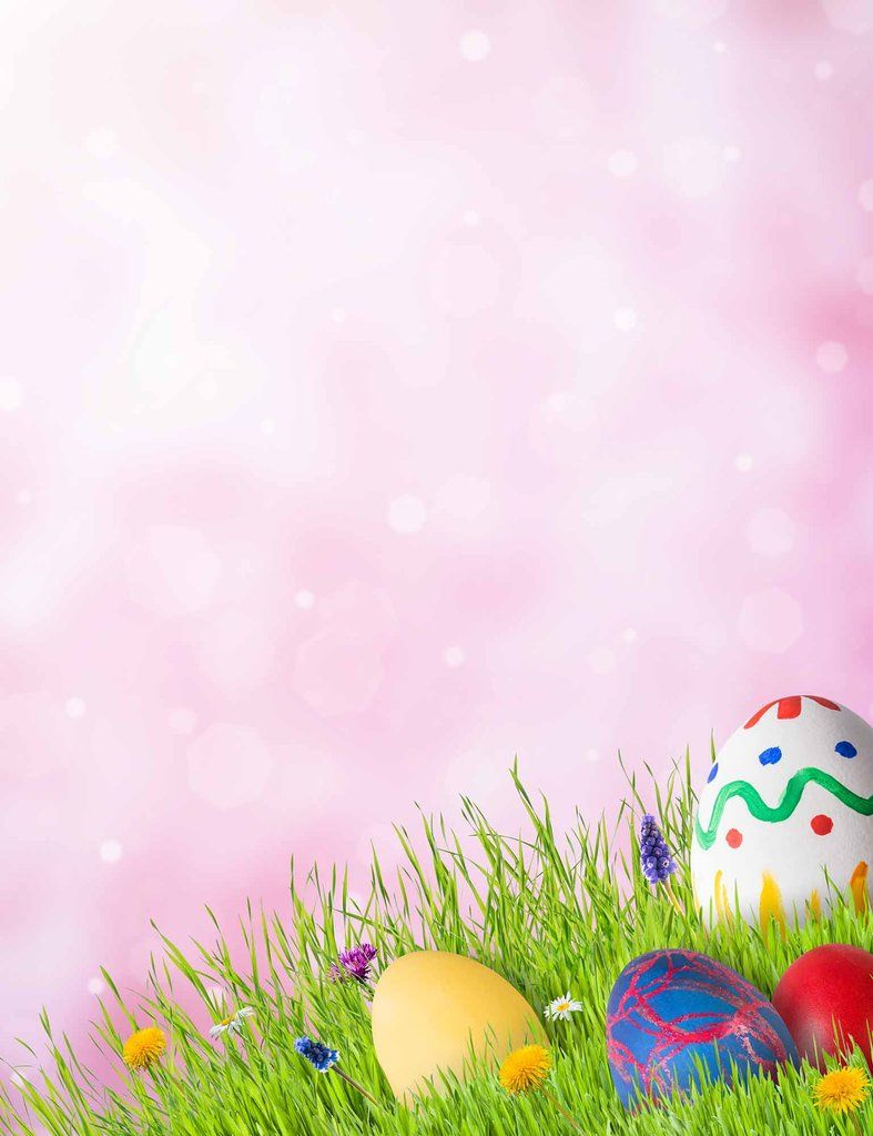 Easter Eggs On Grass With Bokeh Photography Backdrop