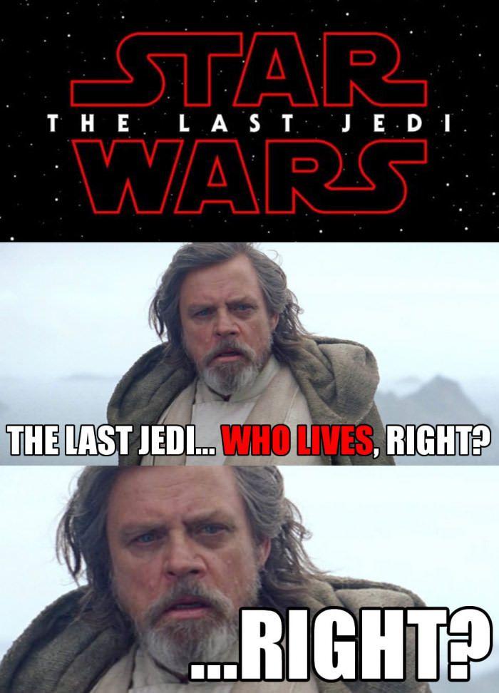 I M Not A Luke Skywalker Fan At All So I M Hoping He Dies And Then It S All Rey Star Wars Memes Star Wars Humor Star Wars Geek