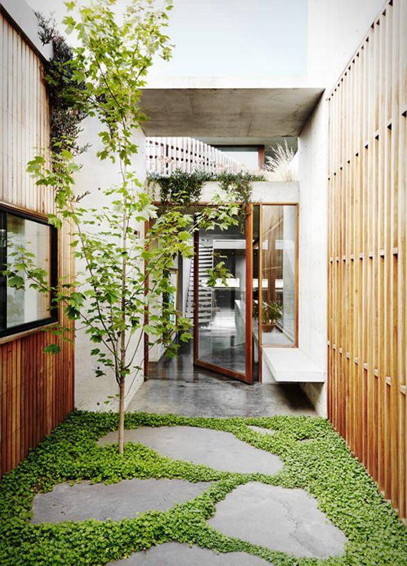 Torquay Concrete House Courtyard Gardens Design Small Courtyard Gardens Courtyard Design