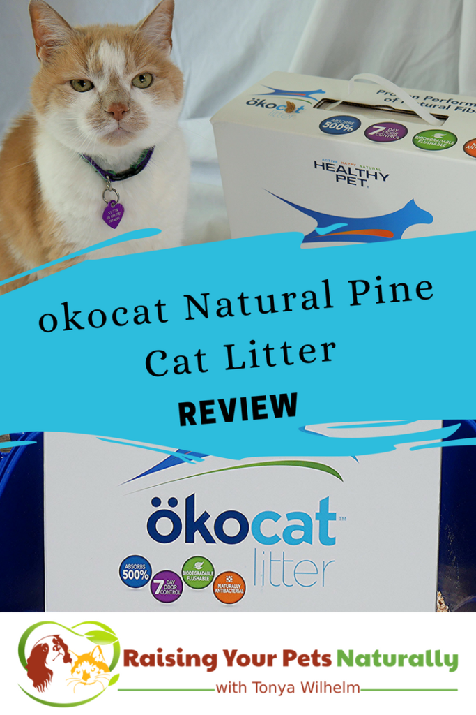 Natural Cat Litter Reviews Okocat Choosing The Best Cat Litter For Your Cat Natural Cat Litter Best Cat Litter Cat Training Scratching