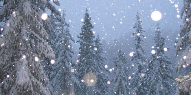 Snow Falling Hd Wallpapers Snow Wallpaper Hd Snow Winter Landscape