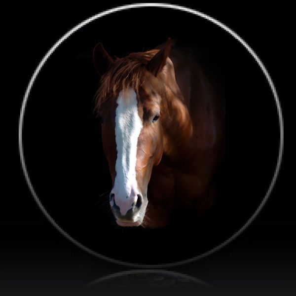 Horse Spare Tire Cover Spare Tire Covers