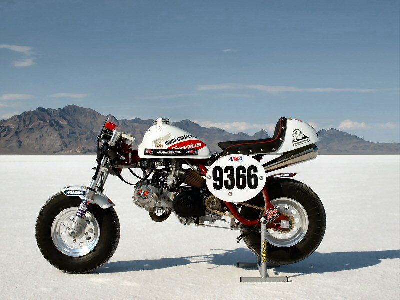 the fastest honda monkey bike in the world | motorcycle