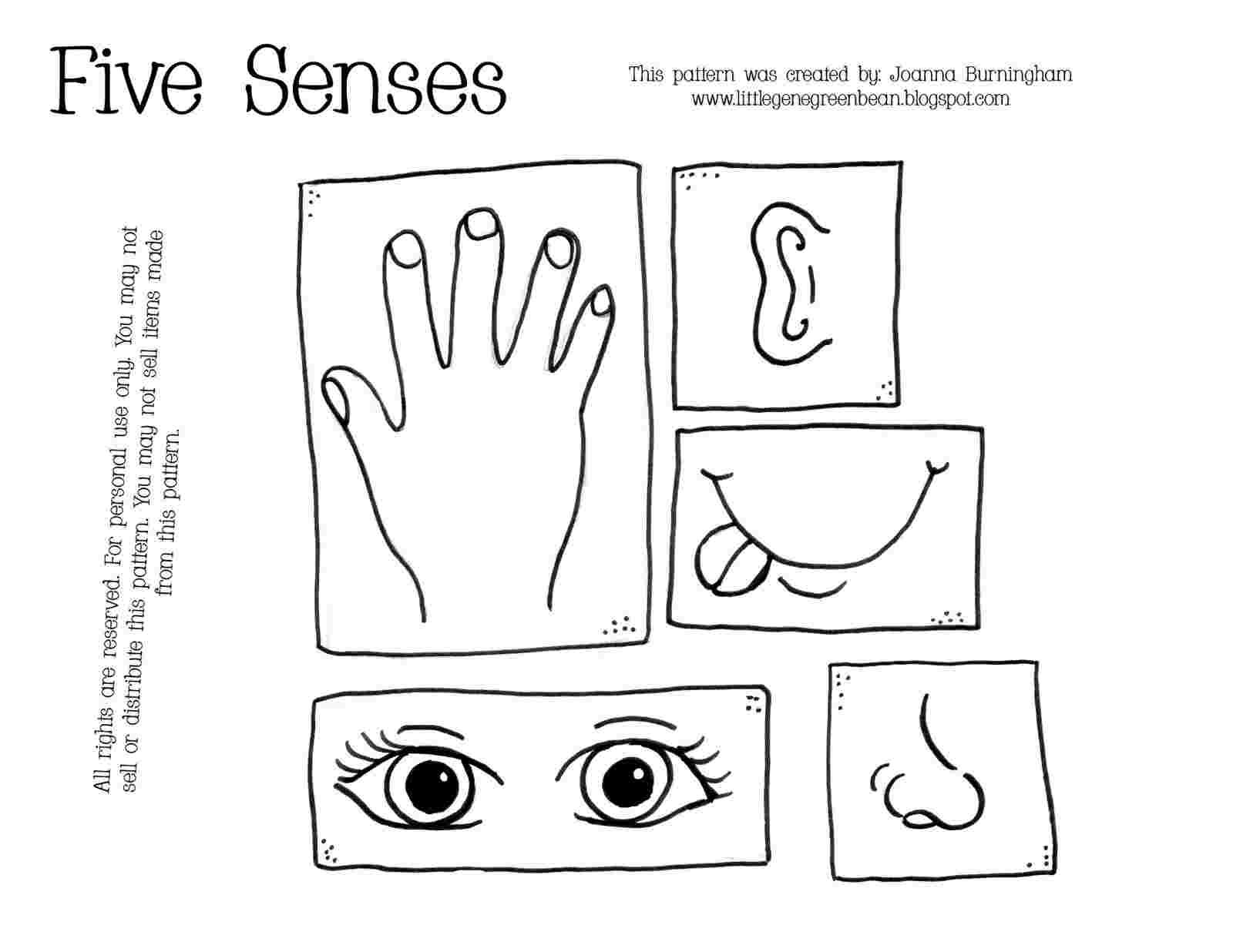 5 Senses Coloring Pages For Kids In