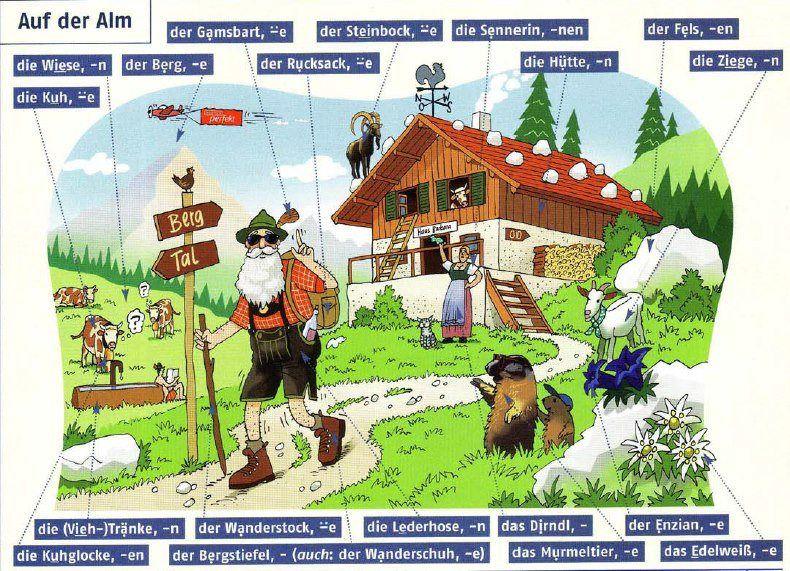 Auf der Alm   Deutsch   Pinterest   Deutsch, Deutsch lernen und Lernen