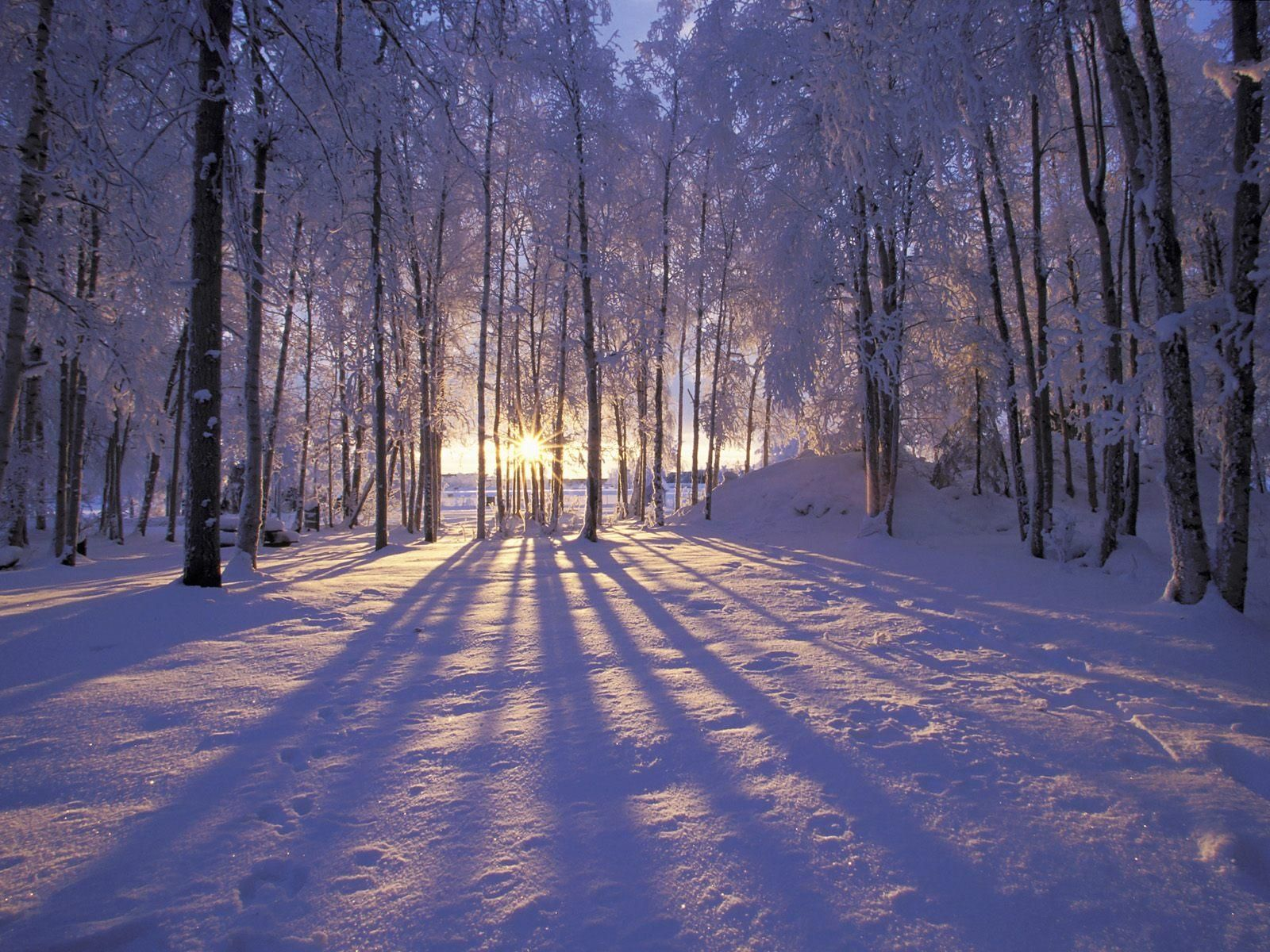 Winter wallpapers hd desktop backgrounds images and pictures winter landscape voltagebd Choice Image