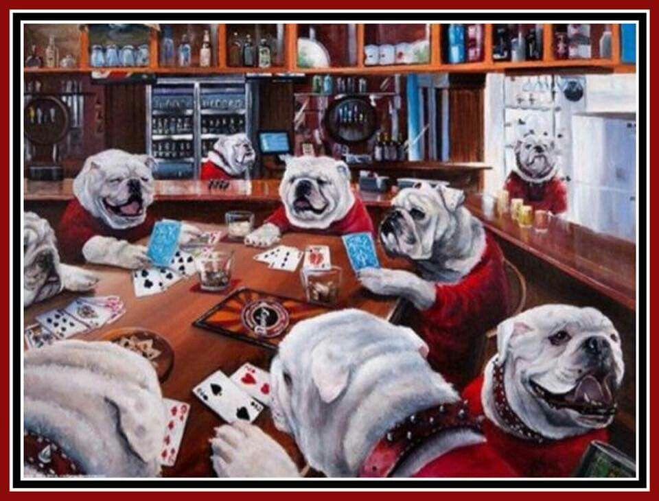Pin By Krystal On English Bulldogs Bulldog Puppies British