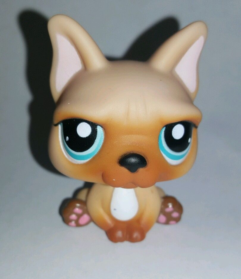 Littlest Pet Shop Tan Brown French Bulldog Dog Blue Eyes 1847