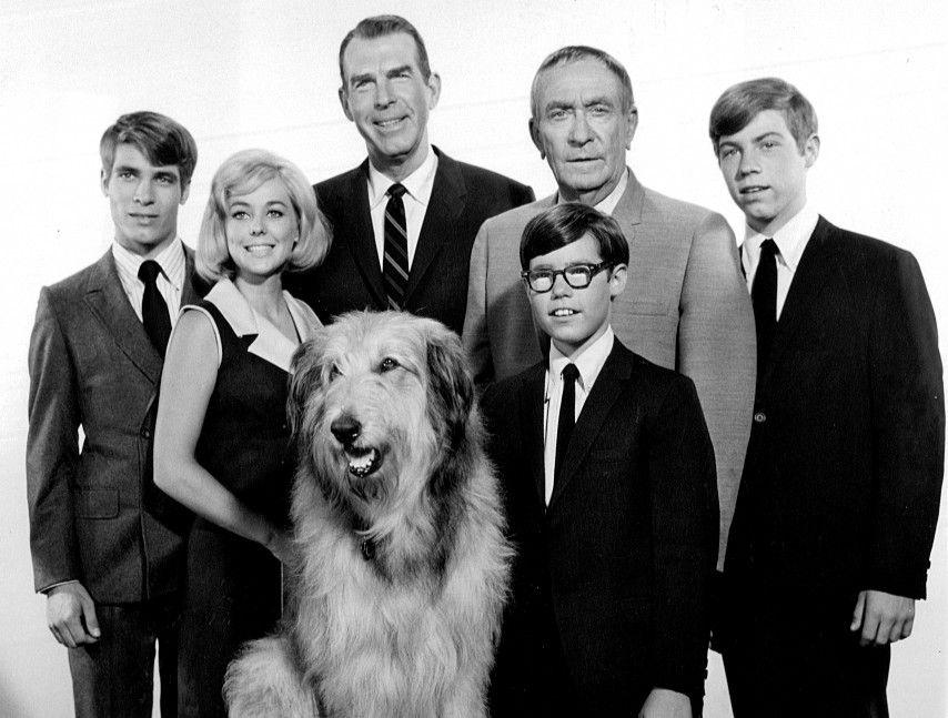 Mes trois fils (My Three Sons) est une série télévisée américaine en 380 épisodes de 25 minutes créée par Tim Considine et Gene Reynolds, composée de 184 épisodes en noir et blanc diffusés entre le 29 septembre 1960 et le 13 mai 1965 sur le réseau ABC, puis 196 épisodes en couleurs diffusés entre le 16 septembre 1965 et le 24 août 1972 sur le réseau CBS.
