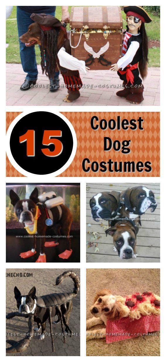 15 Coolest Homemade Dog Halloween Costume Ideas Dog halloween - no cost halloween costume ideas