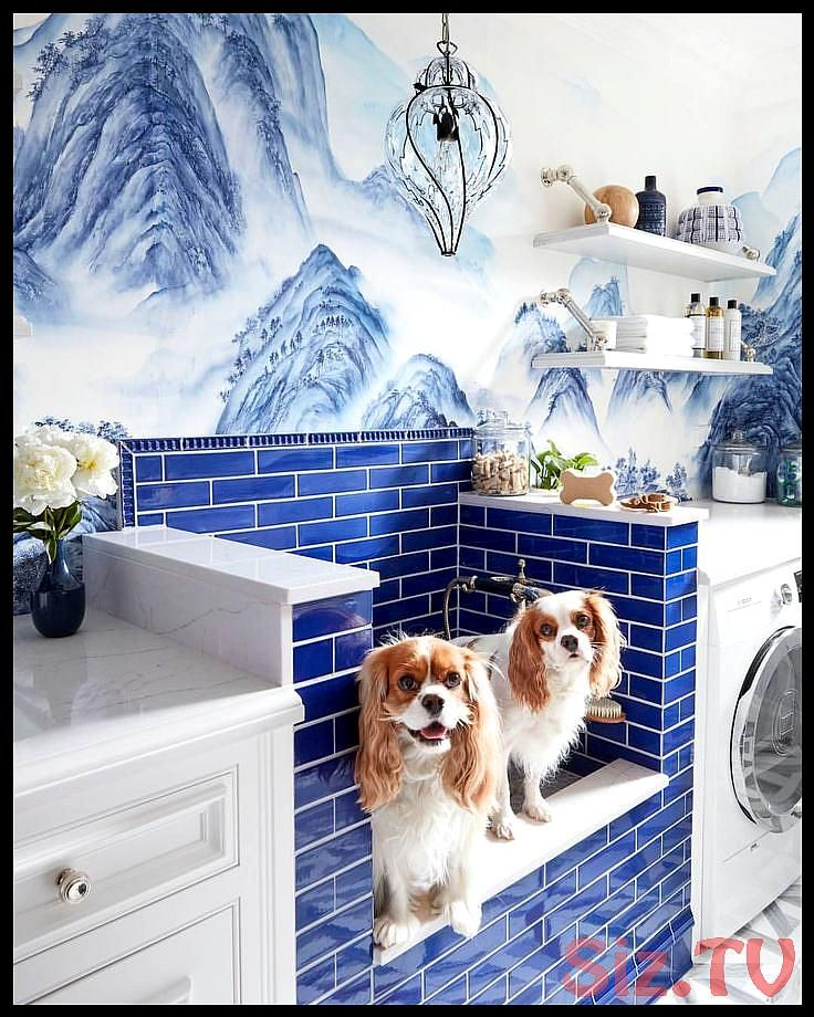 House Beautiful House Beautiful Magazine on Instagram Okay it 39 s official Our laundry NEEDS a puppy parlor seth smootDesign House Beautiful House Beautiful Magazine on...