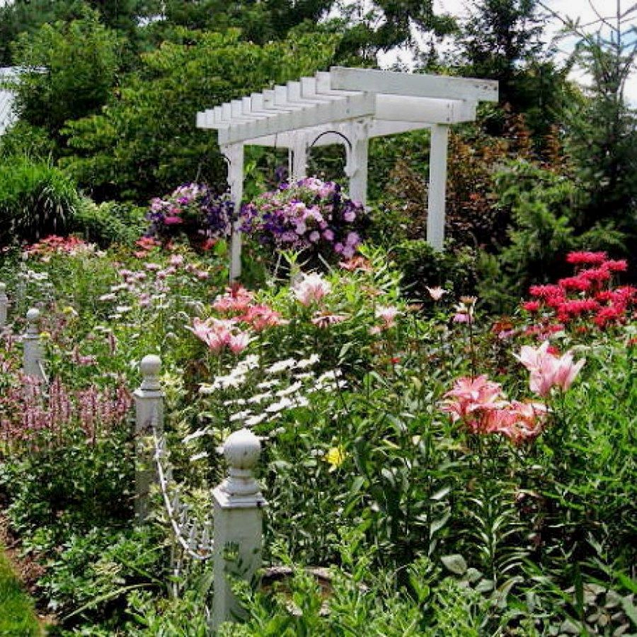 Cottage Garden Designs Affordable Methods