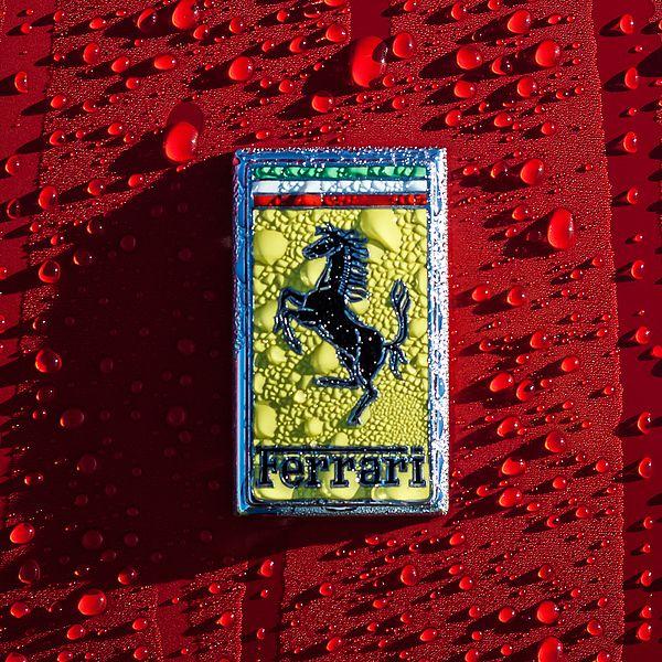 Ferrari Emblem - Car Images by Jill Reger