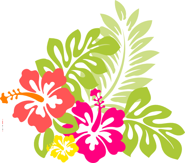 flowers from hawaii the exotic hibiscus flower with word art