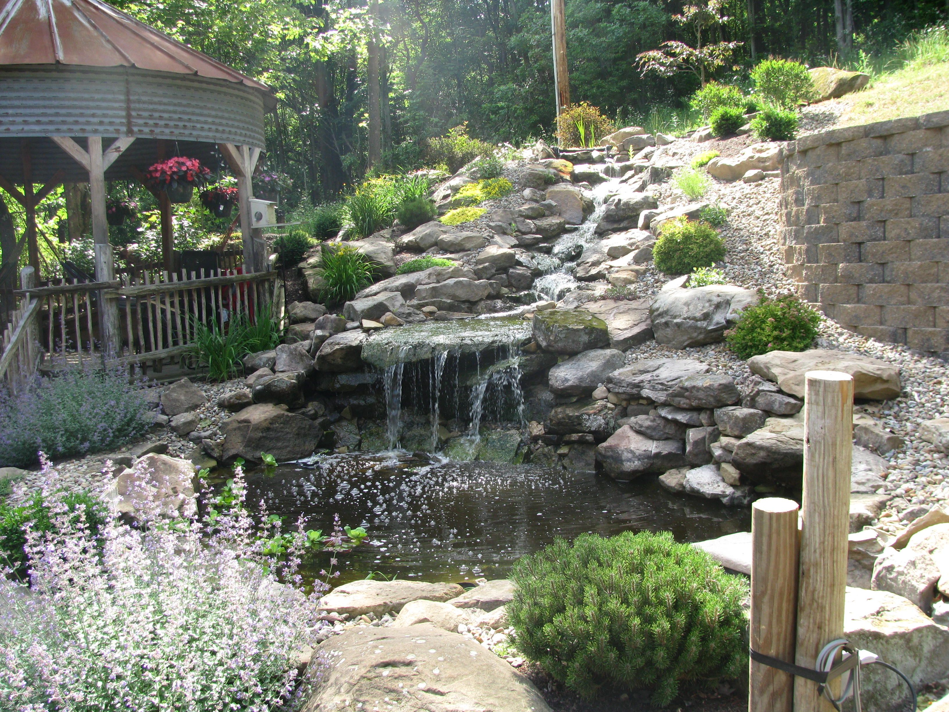 waterfall cascading down from 25ft above. Custom sandstone pond and falls that we created for our client
