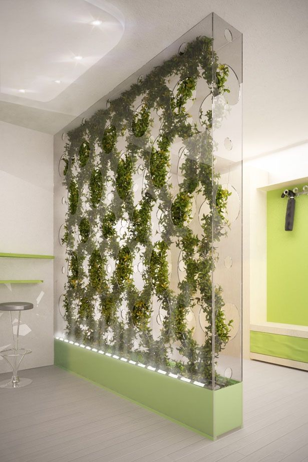 green partition cleans air in your home by ann baldina on interior using artificial boxwood panels with flowers id=49307