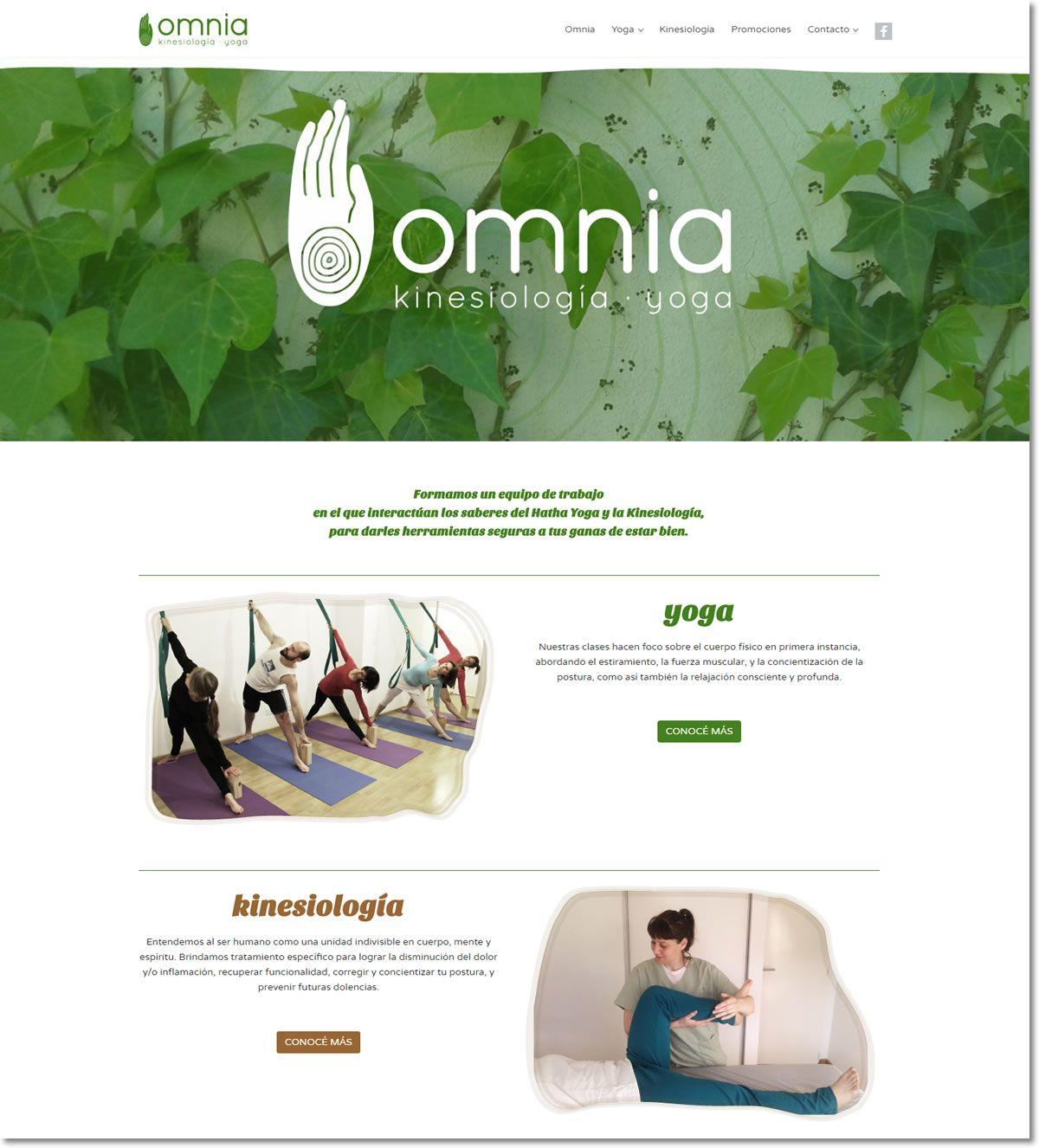 Sitio Web Responsive Para Omnia Estudio De Yoga Y De Kinesiolog A  # Muebles Kinesiologia