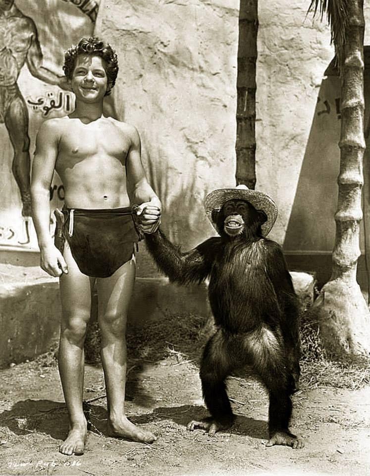 Chita Tarzan