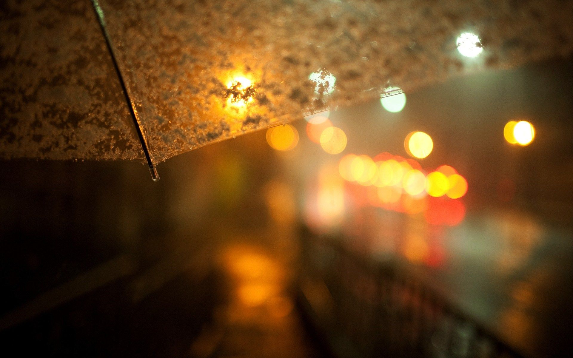 umbrella hd lights macro | photography | pinterest | bokeh, snow
