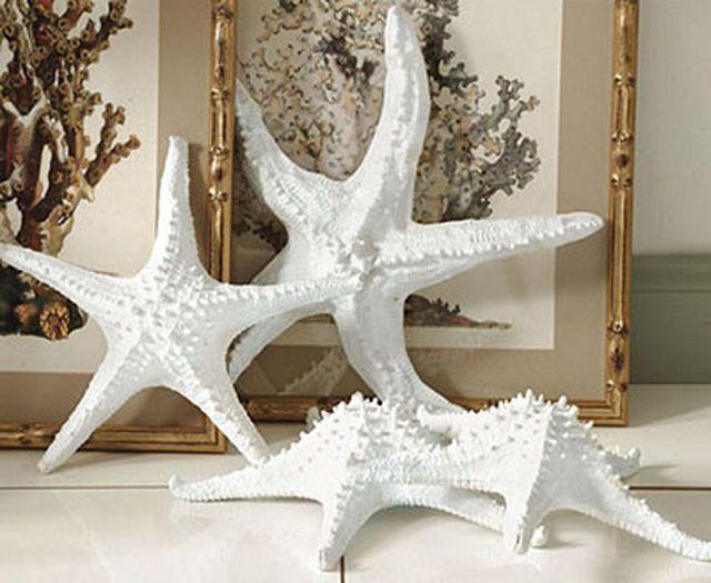 Ballard Starfish