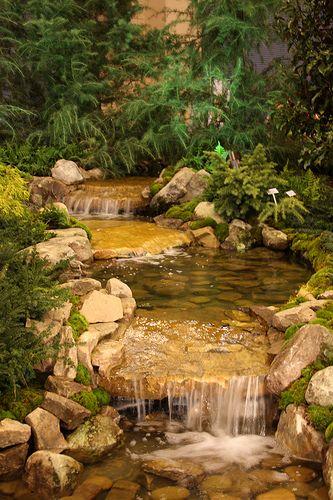 backyard stream Pequeños, Estanques y Cascadas - Cascadas En Jardines