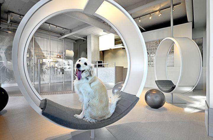 Unleashed Dog Spa Vancouver A R E Awards Retail Design Blog Dog Spa Spa Interior Dog Hotel